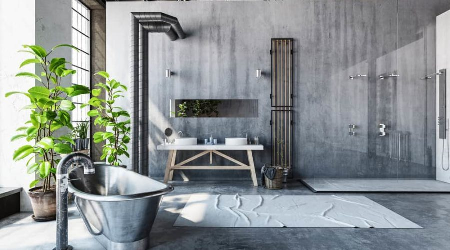 21 Best Plants for Your Bathrooms