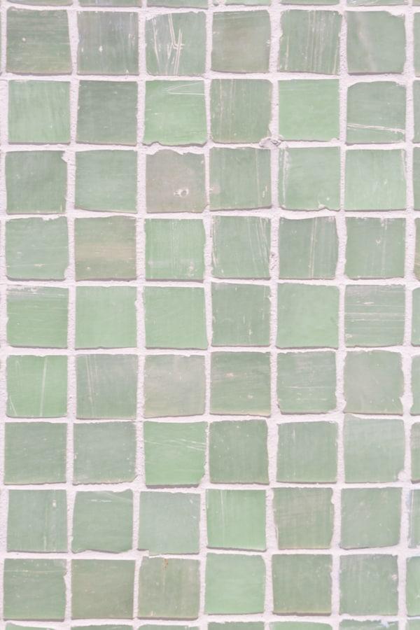 Mossy mosaic