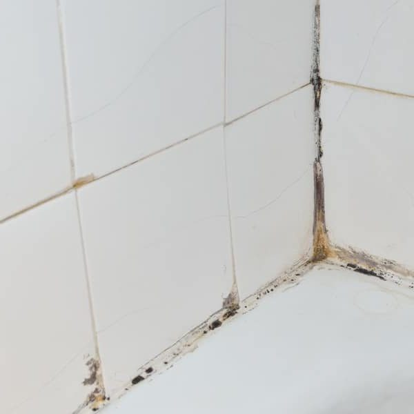 How to Clean Shower Tiles
