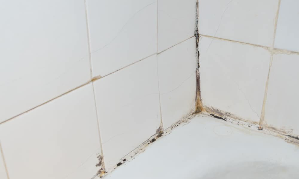 7 Tips To Clean Shower Tile, How To Clean Bathroom Walls