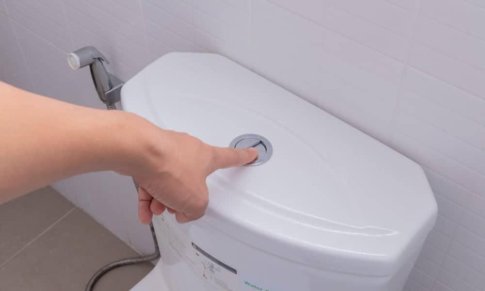 Dual- flush type of the toilet