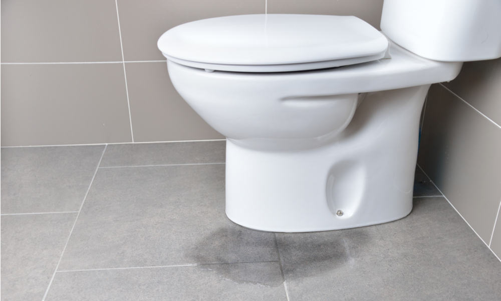 Leaks from the Underside of the Toilet