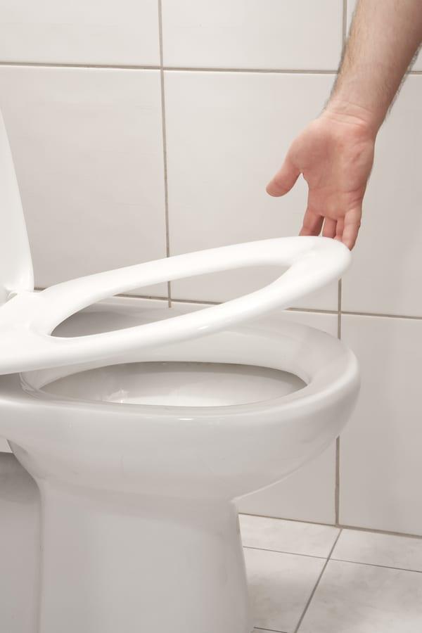 Plastic Toilet Seats 1
