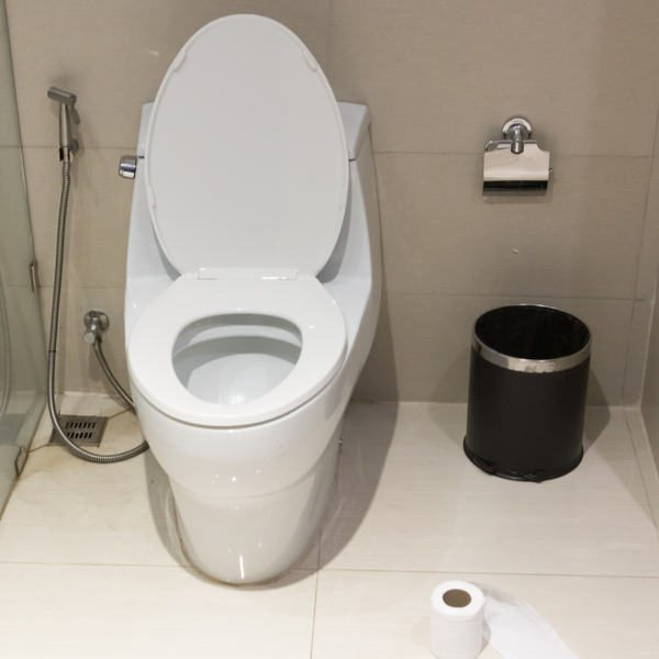 Types of Toilet Seats: Which is Right for You?