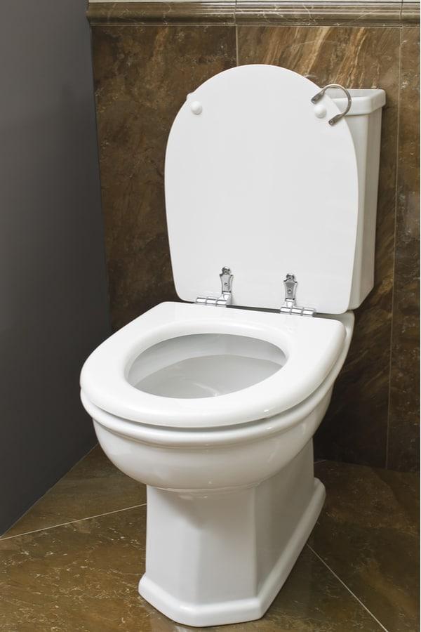 Your Toilet Type
