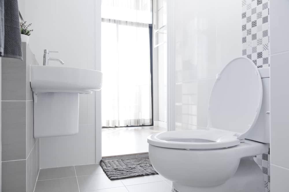 best upflush toilet systems