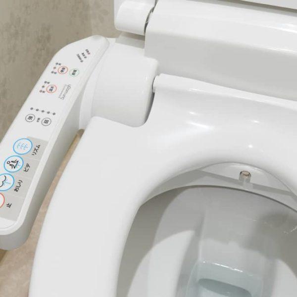 10 Best Bidet Toilet Seats of 2021 – Bidet Reviews