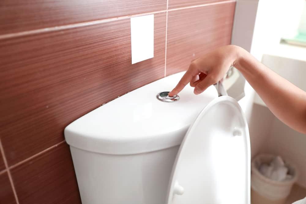 macerating toilet reviews