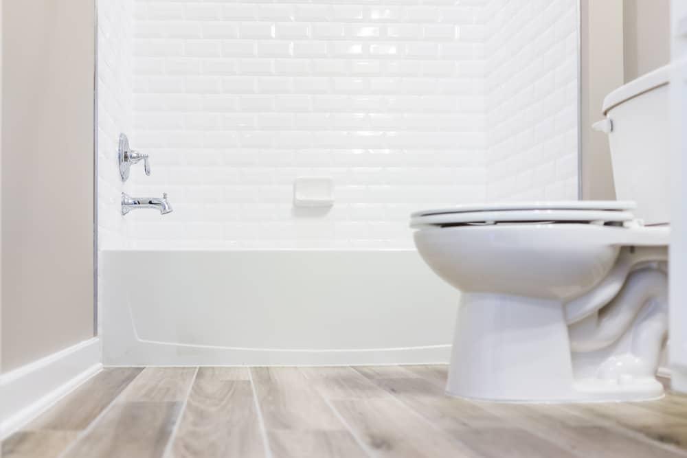 strongest flushing toilet