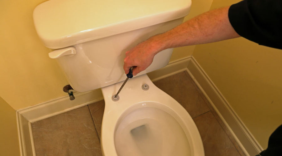 10 Easy Steps to Replace a Toilet Seat