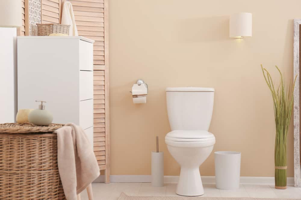 10 Inch Rough-In Toilet features