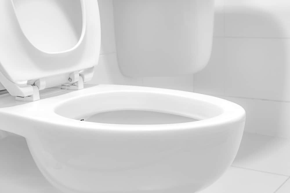 10 Inch Rough-In Toilet reviews