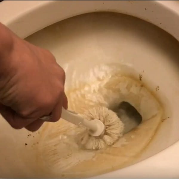 14 Tips to Get Rid of Toilet Ring