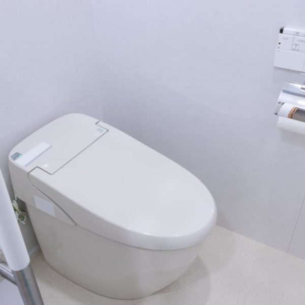 10 Best Tankless Toilets of 2021 – Reviews & Buyer Guide