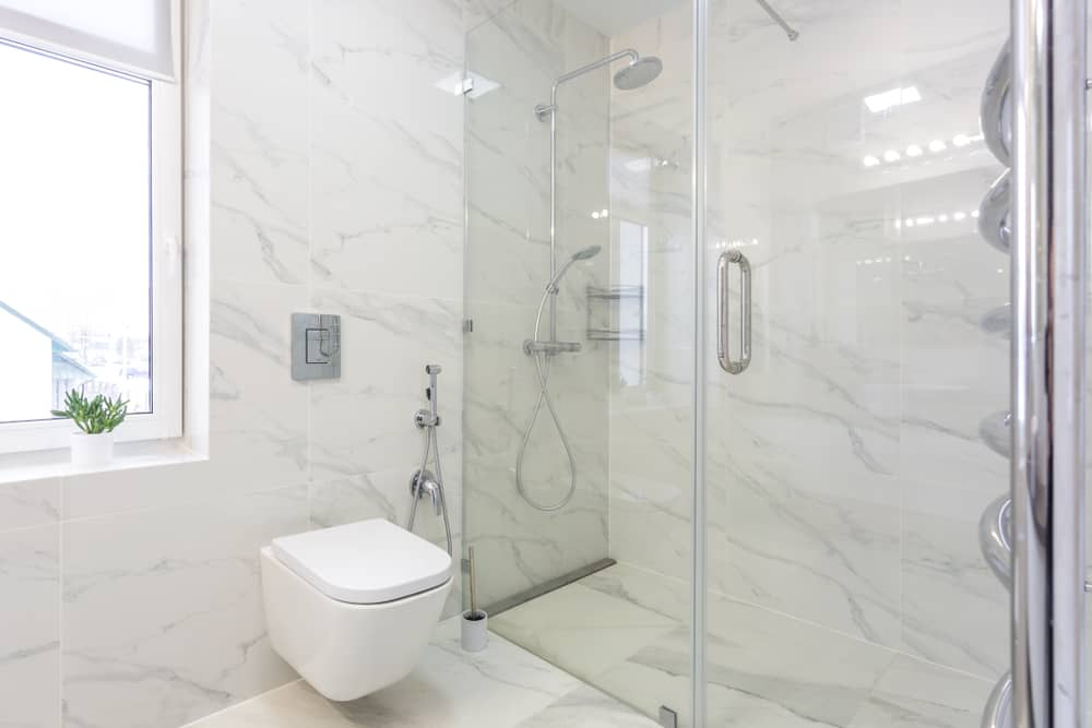 Tankless Toilet features