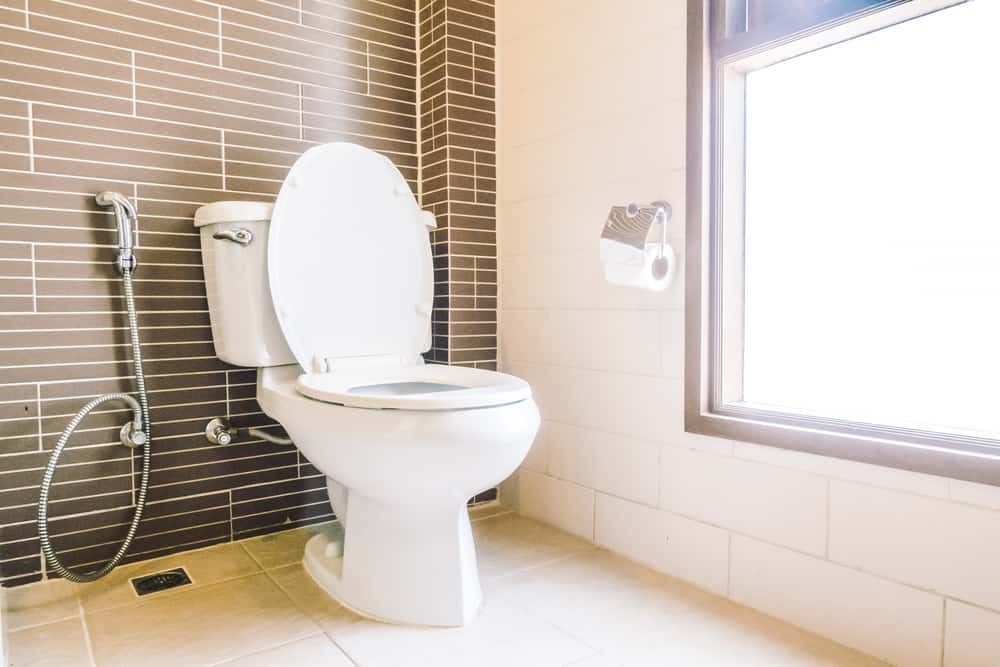 best 10 Inch Rough-In Toilet