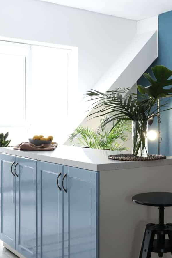 Vibrant Tropical Blue