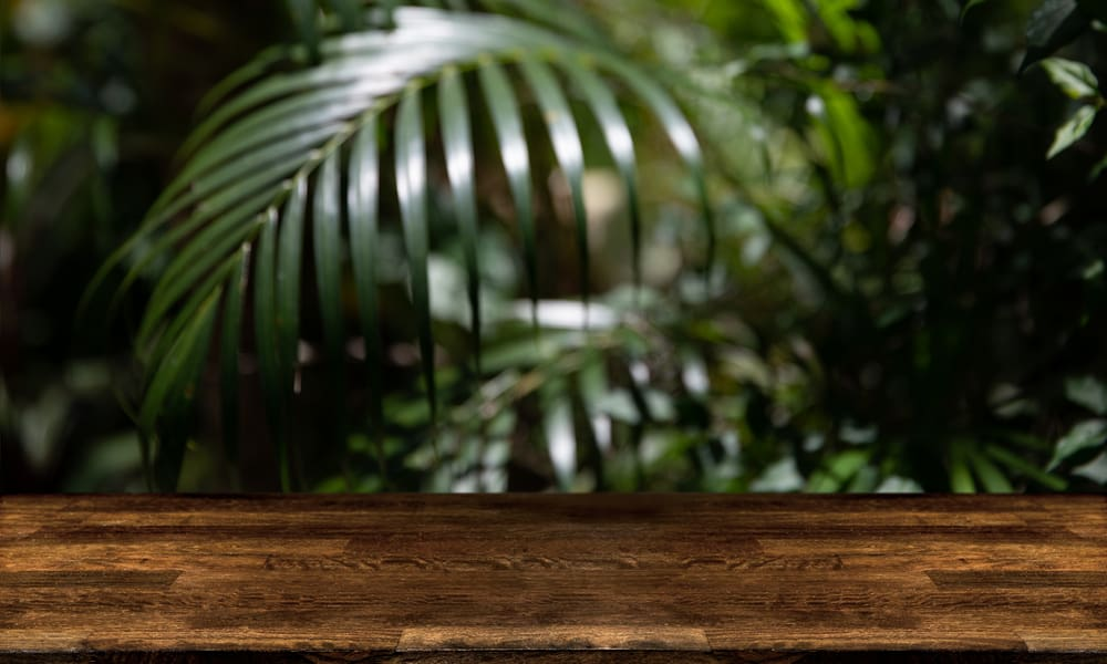 Palmwood countertop material