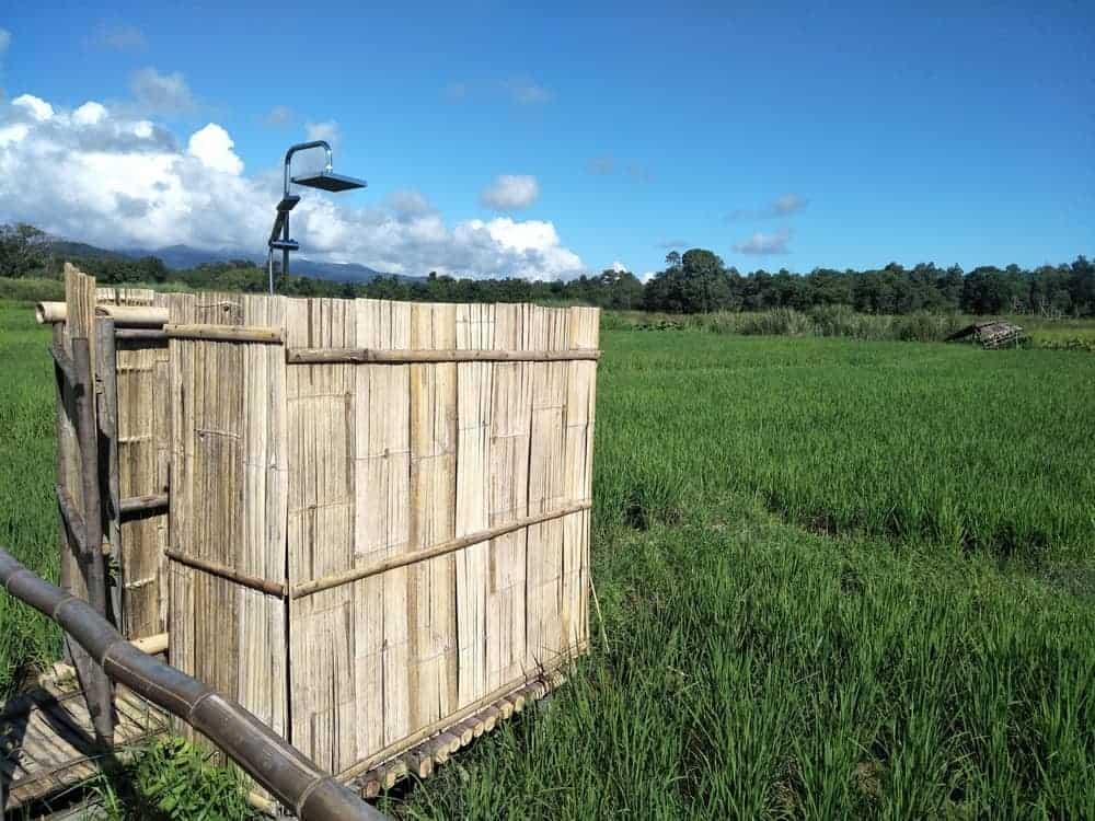 Banal Bamboo