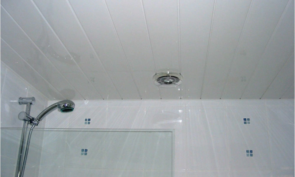 15 Best Bathroom Ceiling Material