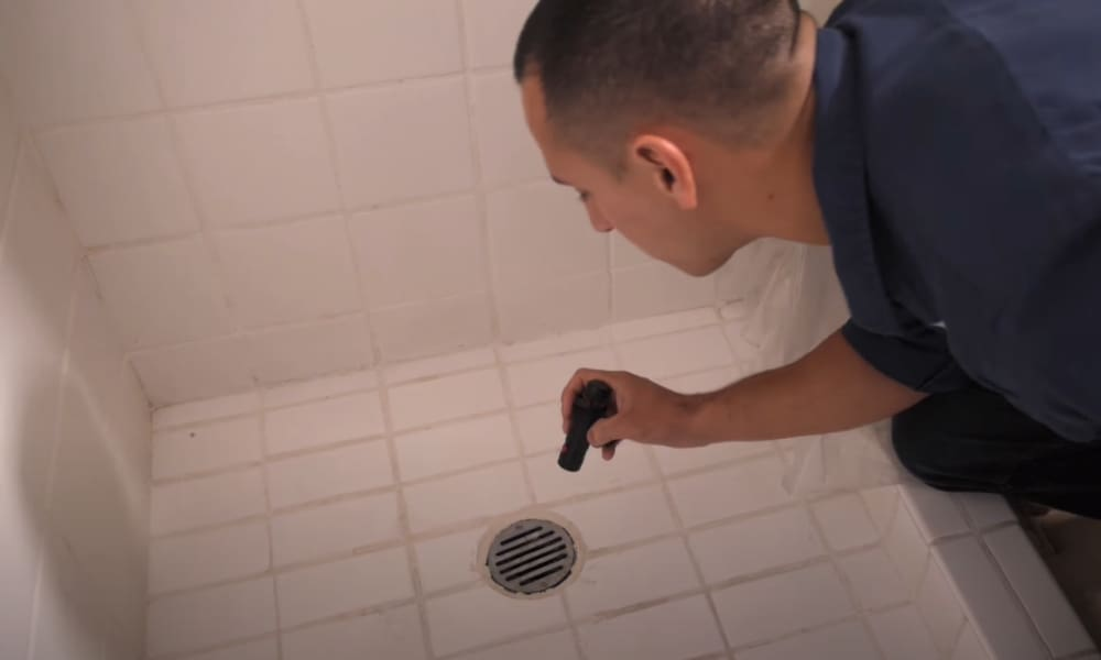 The smell from a shower drain