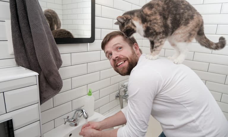 18 Reasons Why Do Cats Follow You into the Bathroom