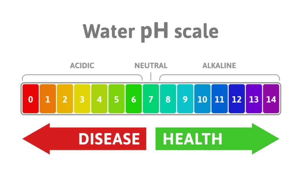 Alkaline PH