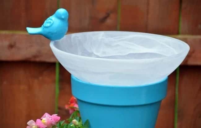 Topsy-Turvy Bird Bath