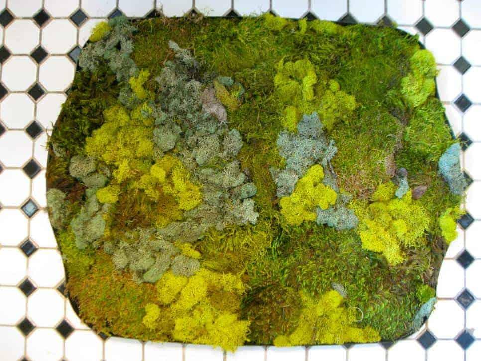 HGTV DIY Moss Bath Mat
